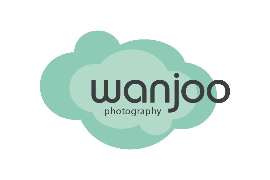 Client's Logo: Wanjoo